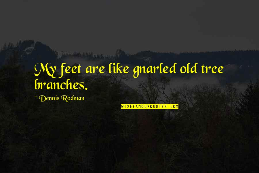 Funny Yfc Quotes By Dennis Rodman: My feet are like gnarled old tree branches.
