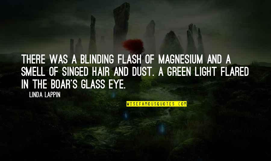Funny Yfc Quotes By Linda Lappin: There was a blinding flash of magnesium and