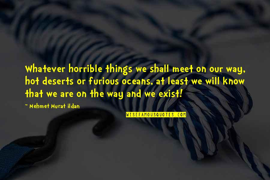 Furious 7 Quotes By Mehmet Murat Ildan: Whatever horrible things we shall meet on our