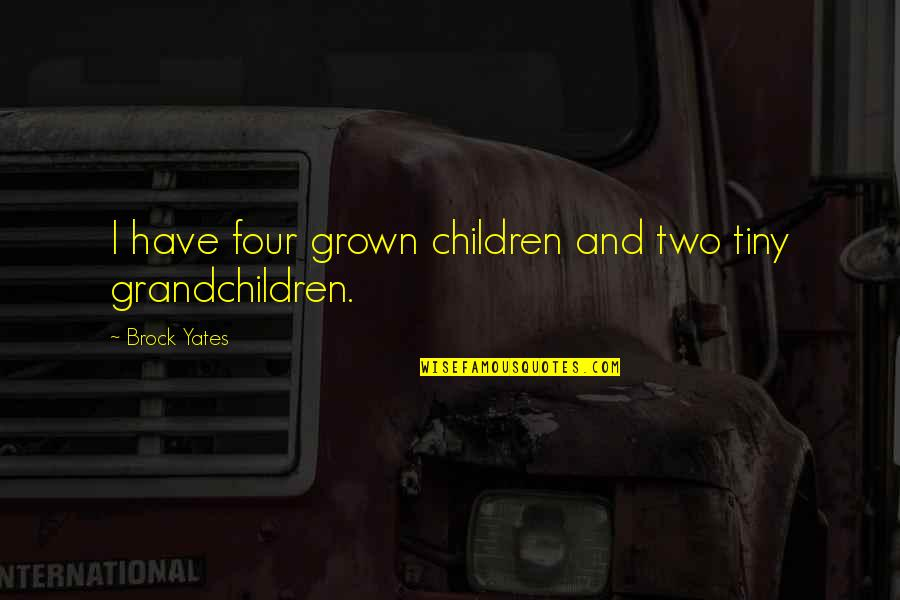 Future Family Life Quotes By Brock Yates: I have four grown children and two tiny
