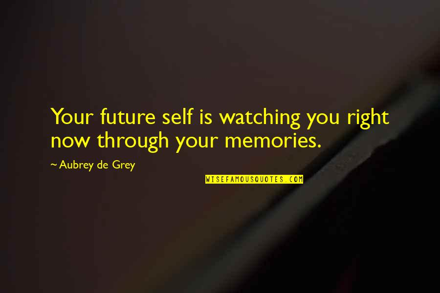 Future Self Quotes By Aubrey De Grey: Your future self is watching you right now