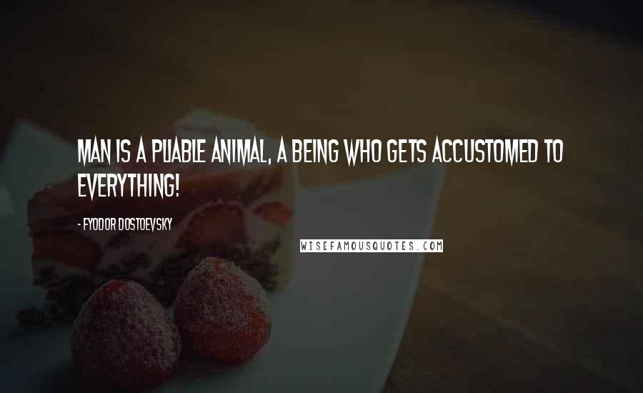 Fyodor Dostoevsky quotes: Man is a pliable animal, a being who gets accustomed to everything!