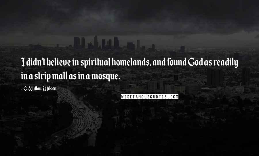 G. Willow Wilson quotes: I didn't believe in spiritual homelands, and found God as readily in a strip mall as in a mosque.