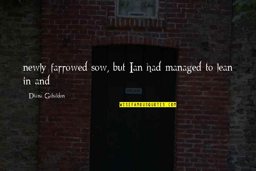 Gabaldon Quotes By Diana Gabaldon: newly-farrowed sow, but Ian had managed to lean