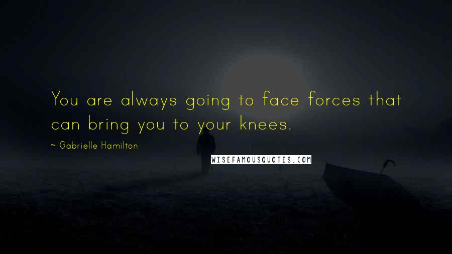 Gabrielle Hamilton quotes: You are always going to face forces that can bring you to your knees.