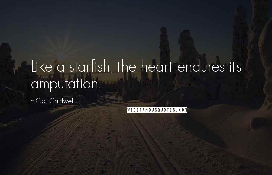Gail Caldwell quotes: Like a starfish, the heart endures its amputation.