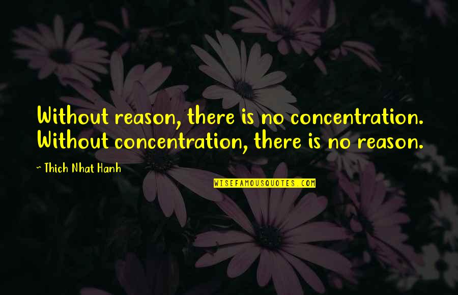 Gaito Gazdanov Quotes By Thich Nhat Hanh: Without reason, there is no concentration. Without concentration,
