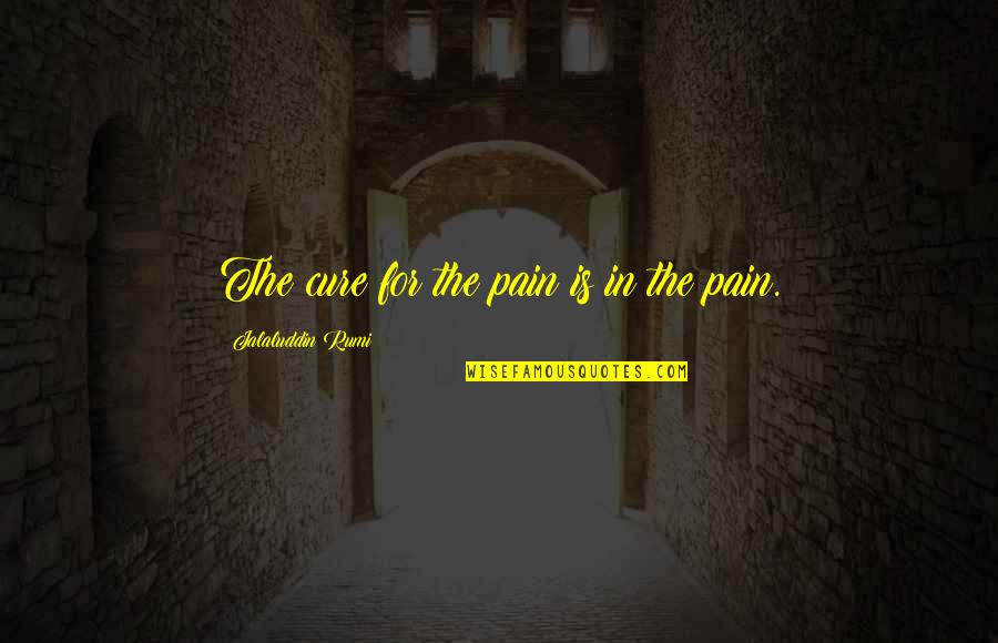 Gambling Being Bad Quotes By Jalaluddin Rumi: The cure for the pain is in the