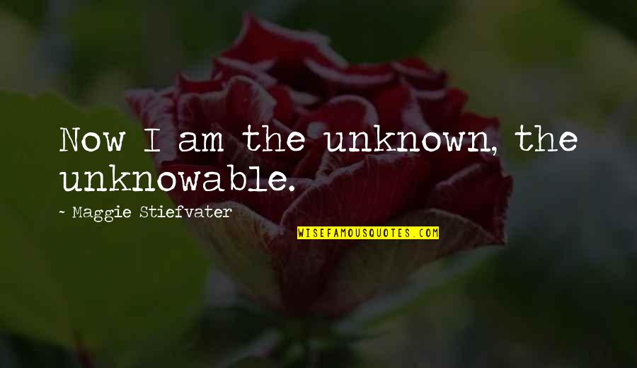 Garch Quotes By Maggie Stiefvater: Now I am the unknown, the unknowable.
