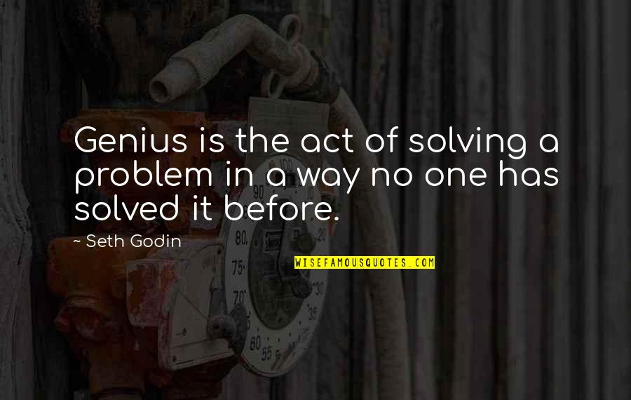 Garden Stepping Stones With Quotes By Seth Godin: Genius is the act of solving a problem