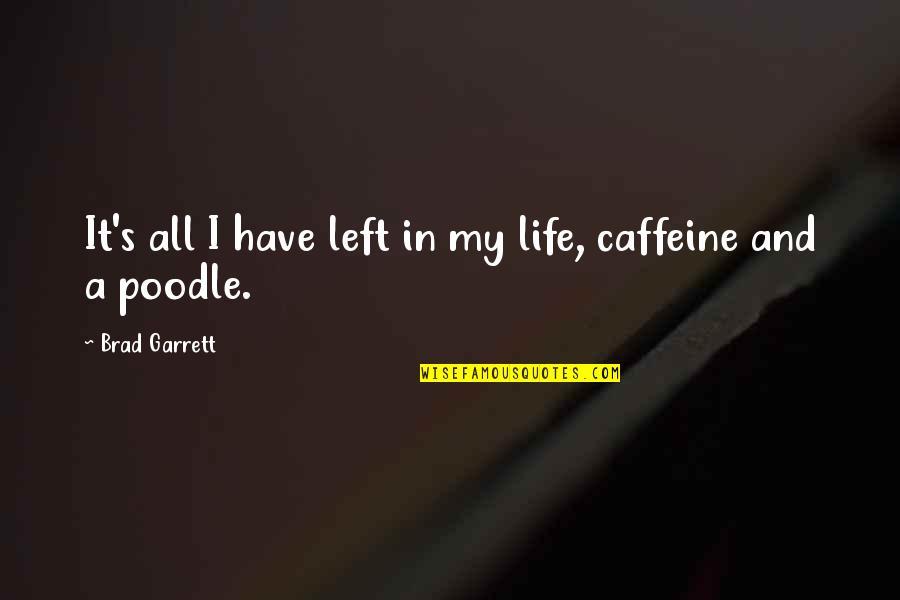 Garrett'd Quotes By Brad Garrett: It's all I have left in my life,