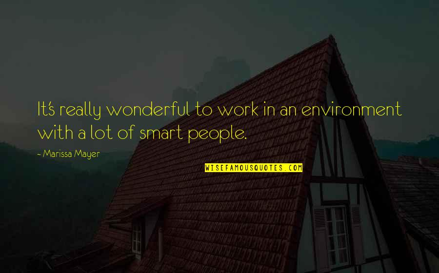 Gasmask Quotes By Marissa Mayer: It's really wonderful to work in an environment