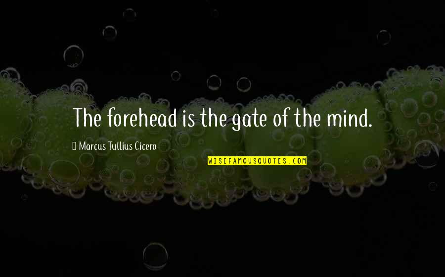 Gate Quotes By Marcus Tullius Cicero: The forehead is the gate of the mind.