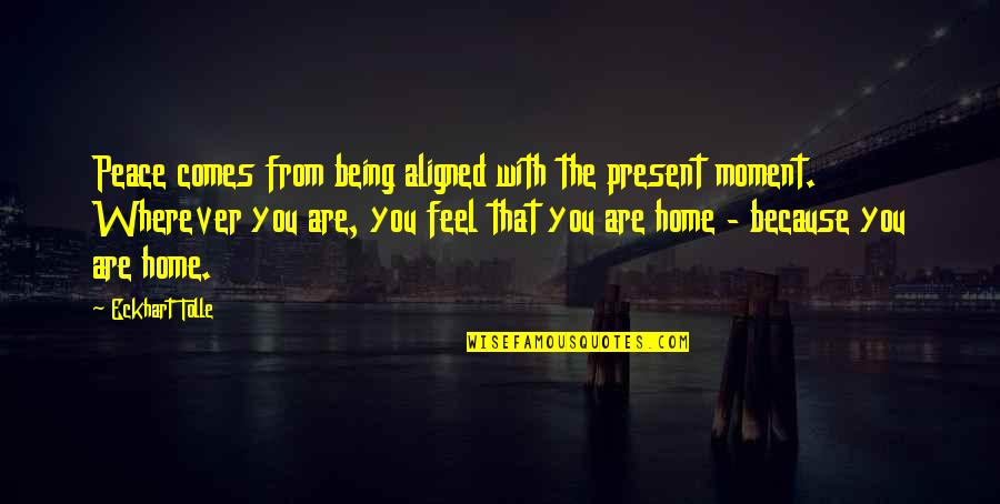Gateway Drugs Quotes By Eckhart Tolle: Peace comes from being aligned with the present