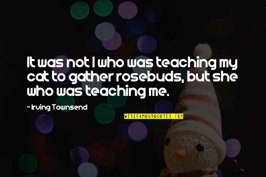 Gather'd Quotes By Irving Townsend: It was not I who was teaching my