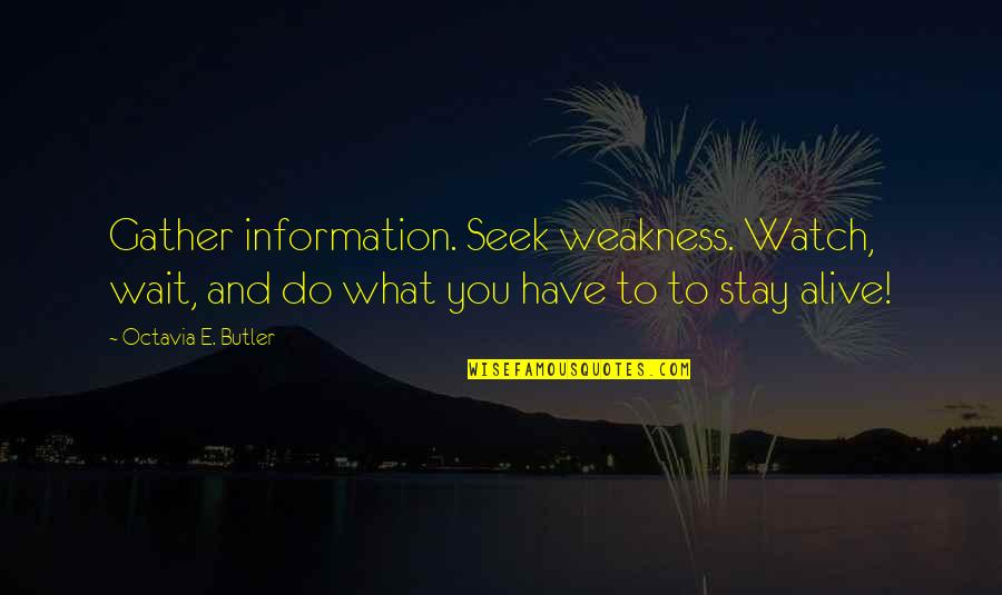 Gather'd Quotes By Octavia E. Butler: Gather information. Seek weakness. Watch, wait, and do