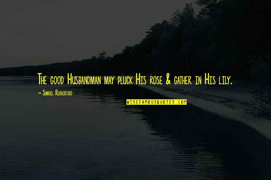 Gather'd Quotes By Samuel Rutherford: The good Husbandman may pluck His rose &