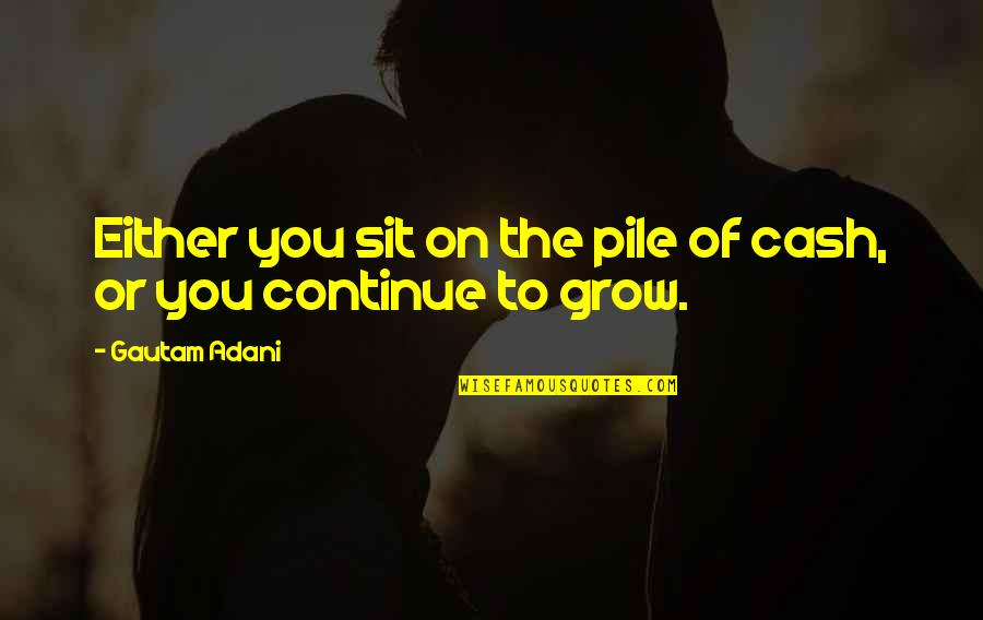 Gautam Adani Quotes By Gautam Adani: Either you sit on the pile of cash,