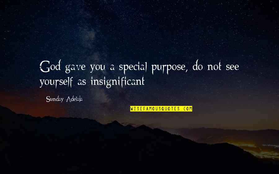 Gave Quotes By Sunday Adelaja: God gave you a special purpose, do not