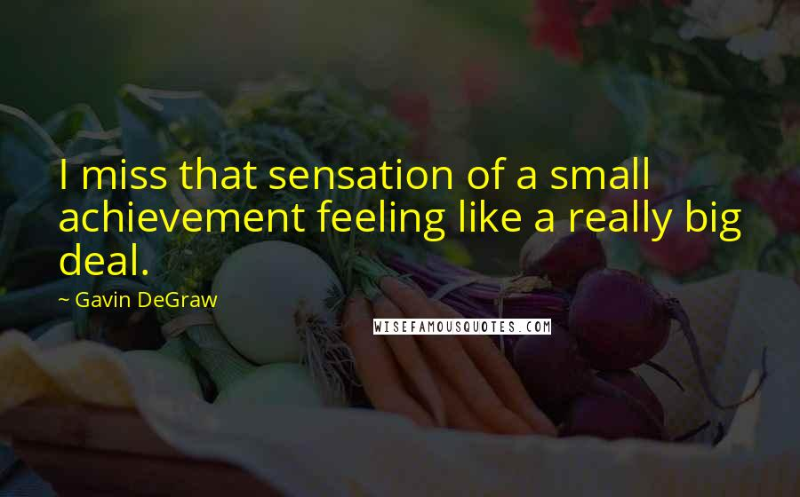 Gavin DeGraw quotes: I miss that sensation of a small achievement feeling like a really big deal.