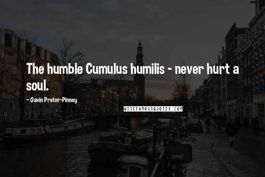 Gavin Pretor-Pinney quotes: The humble Cumulus humilis - never hurt a soul.