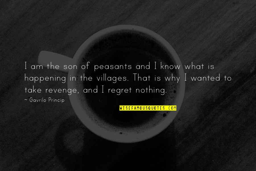 Gavrilo Princip Quotes By Gavrilo Princip: I am the son of peasants and I