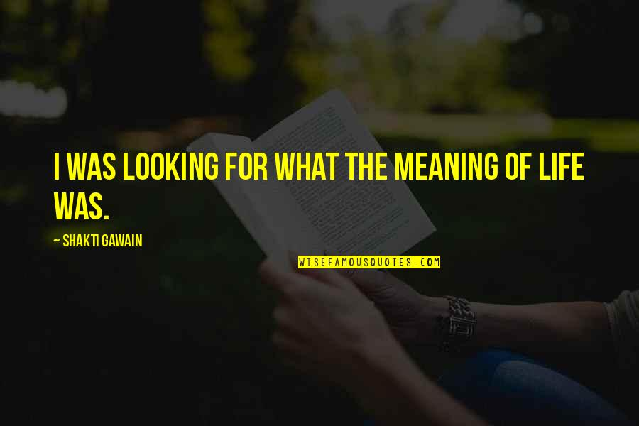 Gawain's Quotes By Shakti Gawain: I was looking for what the meaning of