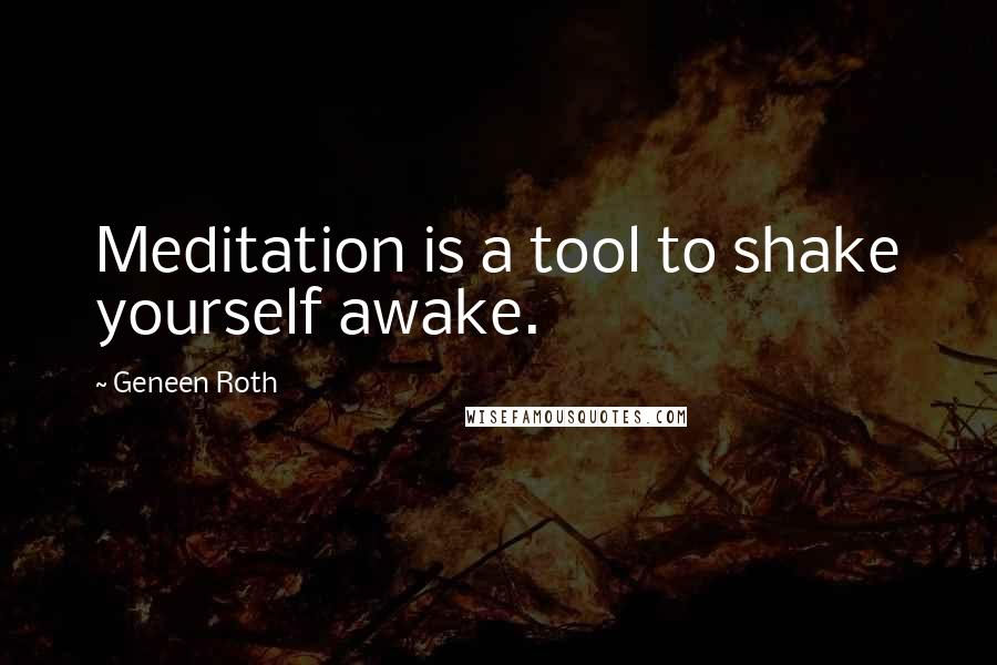 Geneen Roth quotes: Meditation is a tool to shake yourself awake.