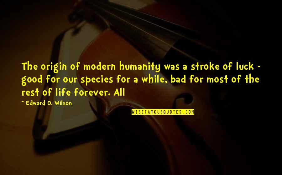 Gents Quotes By Edward O. Wilson: The origin of modern humanity was a stroke
