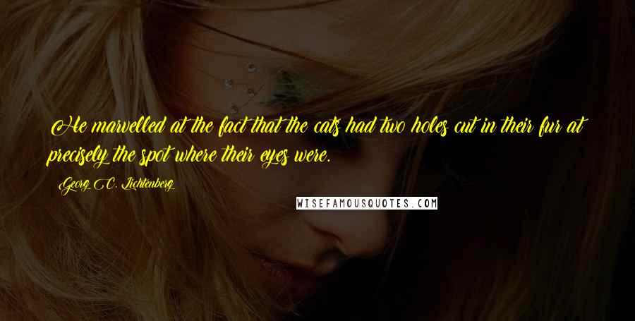 Georg C. Lichtenberg quotes: He marvelled at the fact that the cats had two holes cut in their fur at precisely the spot where their eyes were.