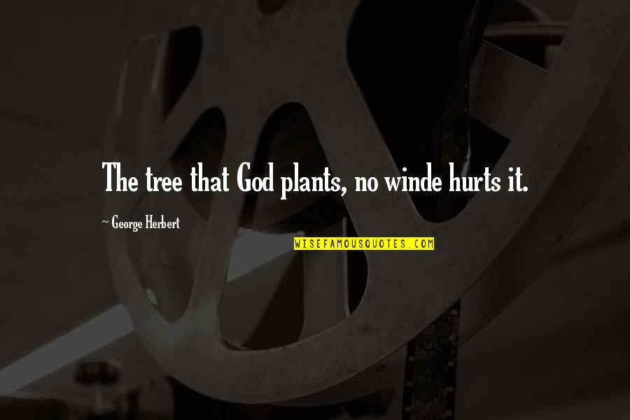 George Herbert Quotes By George Herbert: The tree that God plants, no winde hurts