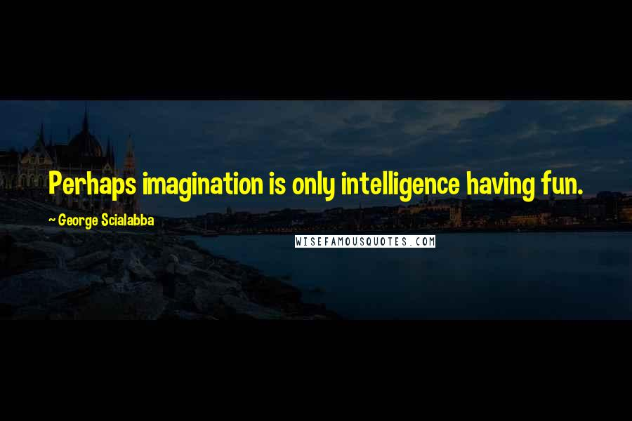 George Scialabba quotes: Perhaps imagination is only intelligence having fun.