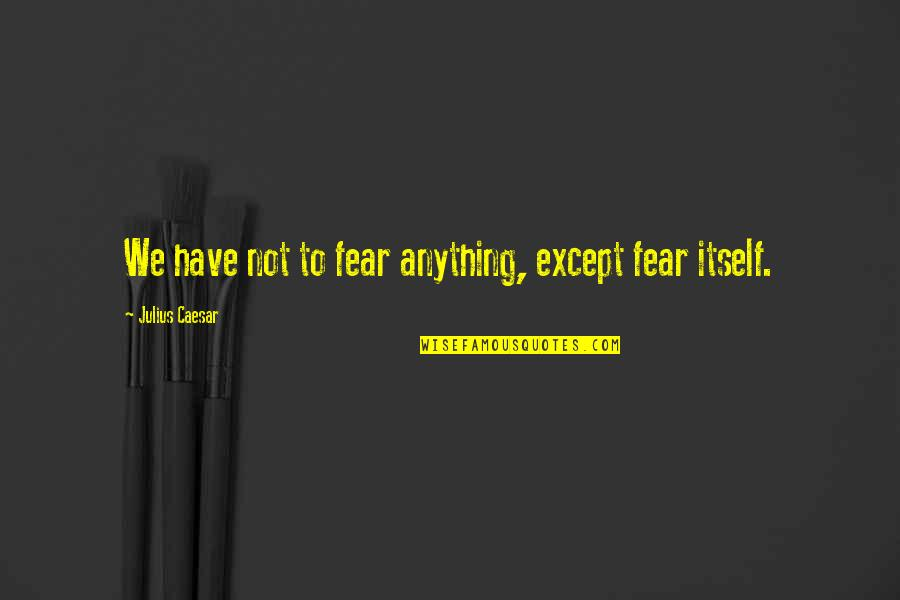 Gerard Butler Chasing Mavericks Quotes By Julius Caesar: We have not to fear anything, except fear