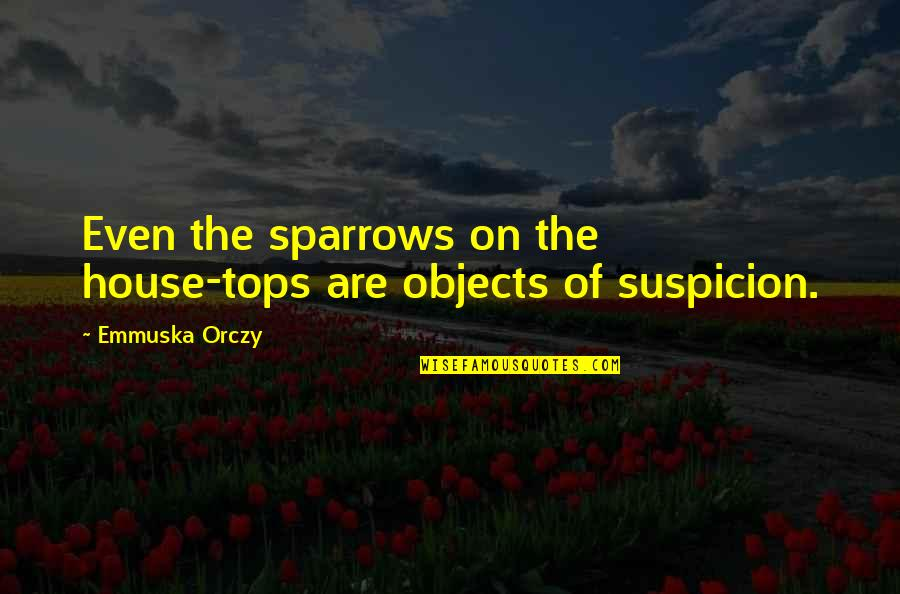 German Revolution 1848 Quotes By Emmuska Orczy: Even the sparrows on the house-tops are objects
