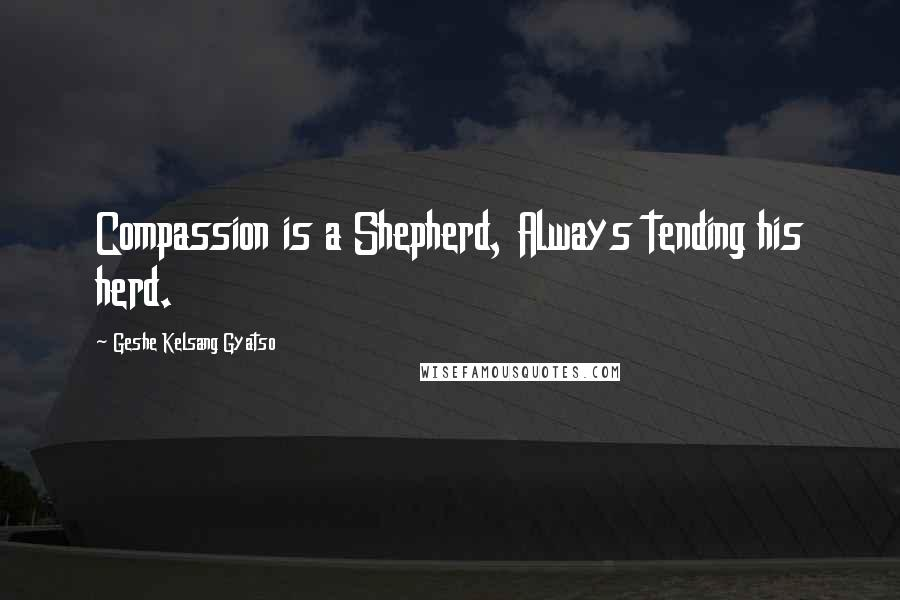 Geshe Kelsang Gyatso quotes: Compassion is a Shepherd, Always tending his herd.