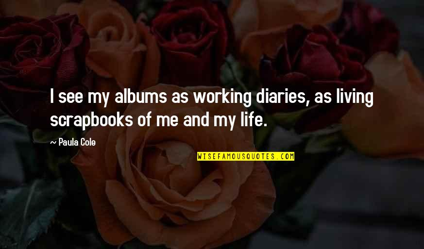 Getting Back Together With Your True Love Quotes By Paula Cole: I see my albums as working diaries, as
