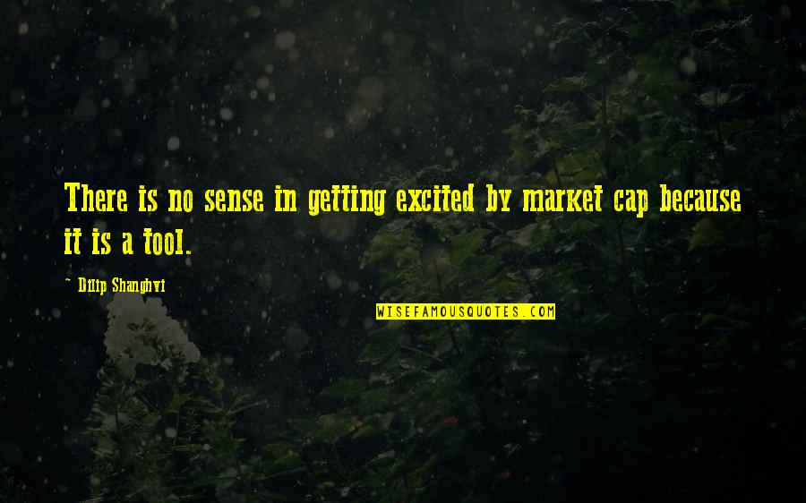 Getting Excited Quotes By Dilip Shanghvi: There is no sense in getting excited by