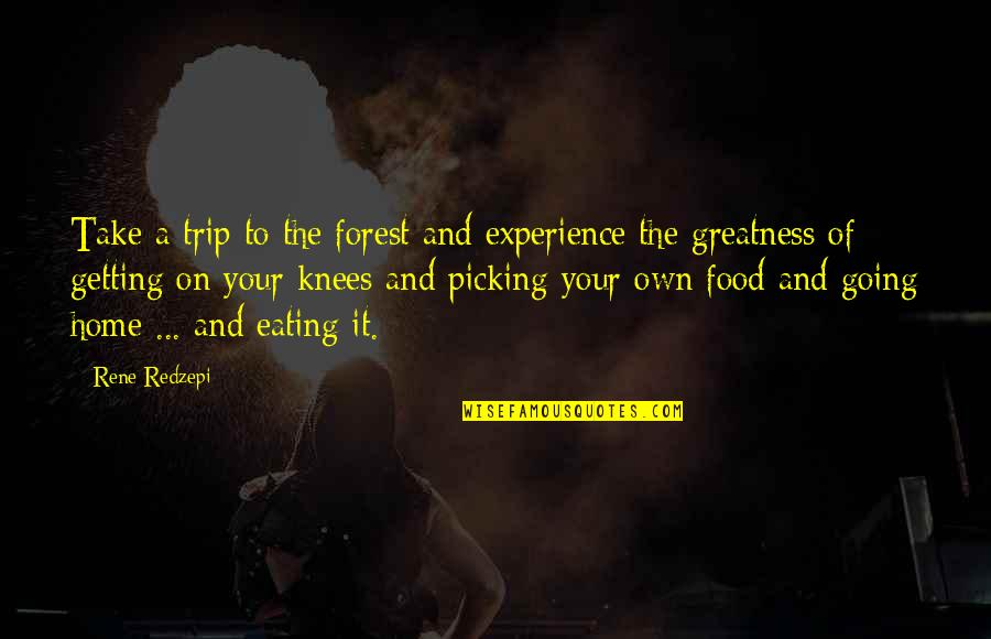 Getting It On Your Own Quotes By Rene Redzepi: Take a trip to the forest and experience