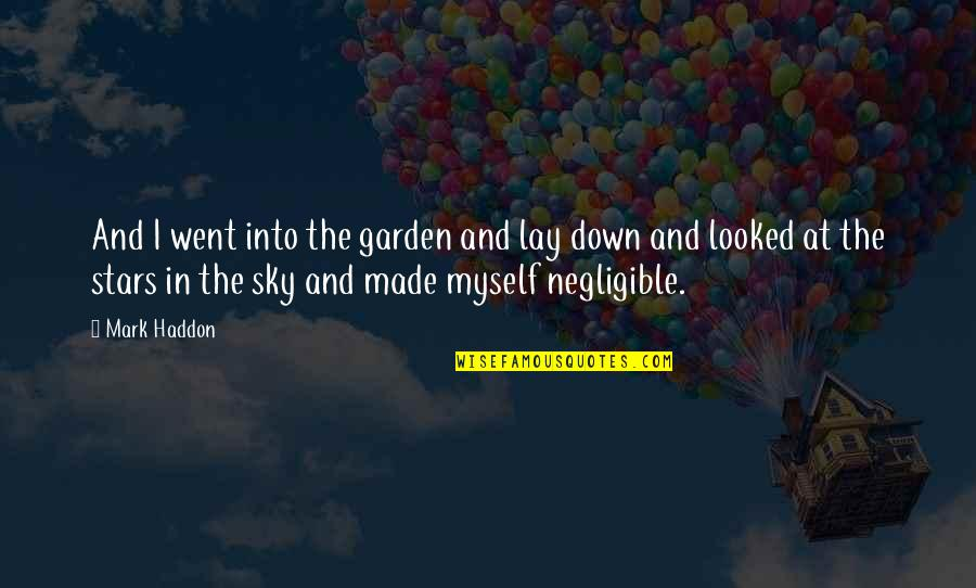 Getting The Weekend Started Quotes By Mark Haddon: And I went into the garden and lay