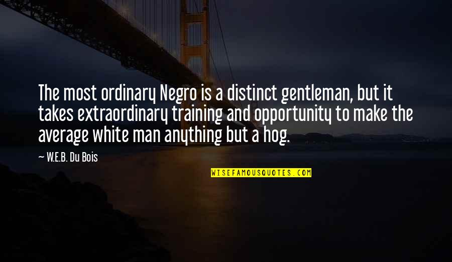 Ghalib Mirza Quotes By W.E.B. Du Bois: The most ordinary Negro is a distinct gentleman,