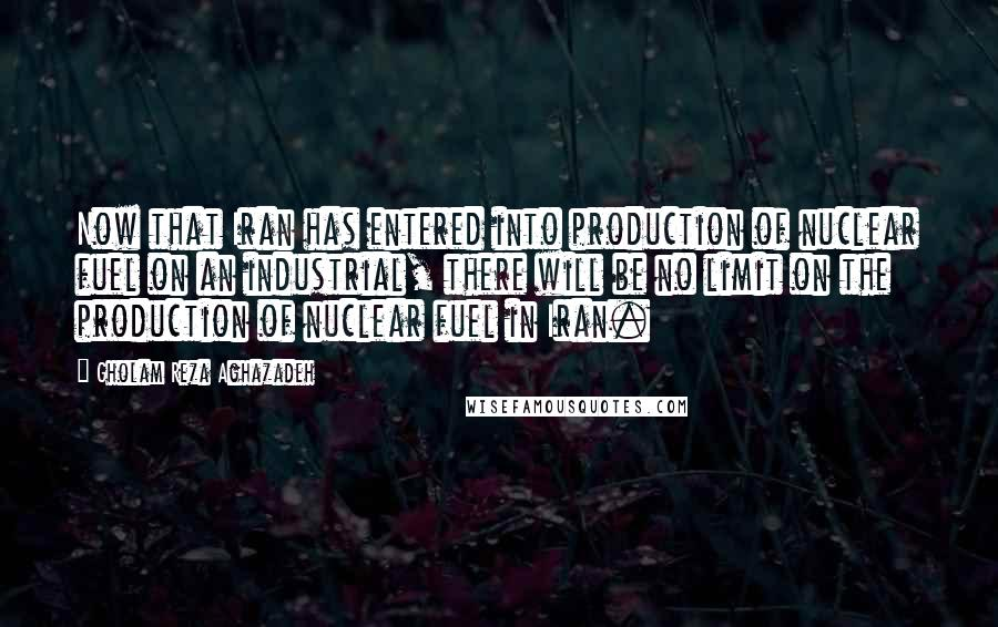 Gholam Reza Aghazadeh quotes: Now that Iran has entered into production of nuclear fuel on an industrial, there will be no limit on the production of nuclear fuel in Iran.