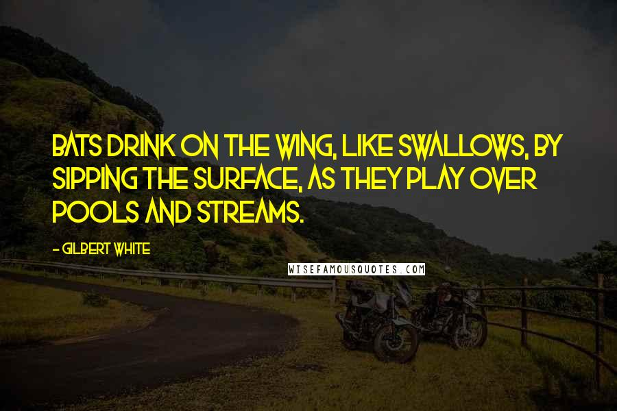Gilbert White quotes: Bats drink on the wing, like swallows, by sipping the surface, as they play over pools and streams.