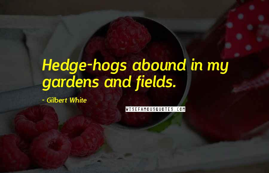 Gilbert White quotes: Hedge-hogs abound in my gardens and fields.