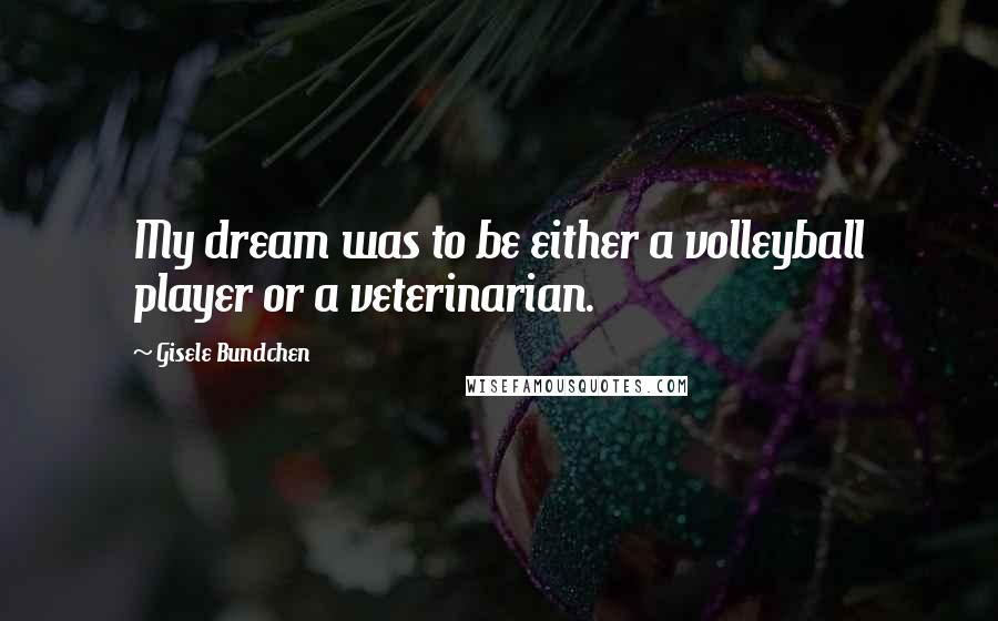 Gisele Bundchen quotes: My dream was to be either a volleyball player or a veterinarian.