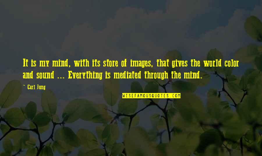 Giving Up On Everything Quotes By Carl Jung: It is my mind, with its store of