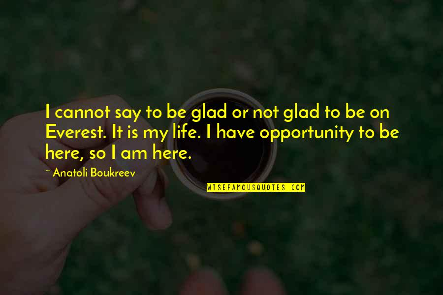 Glad You're In My Life Quotes By Anatoli Boukreev: I cannot say to be glad or not