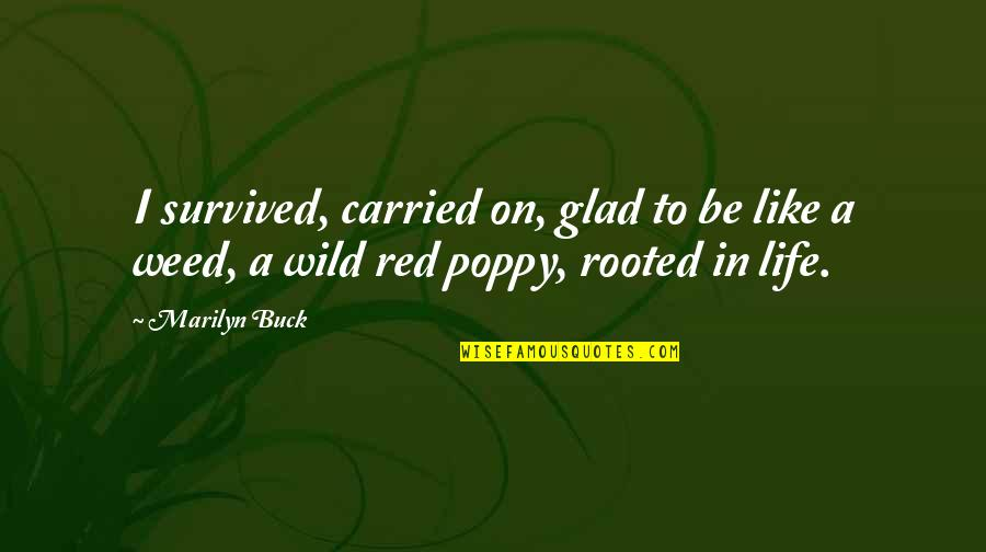Glad You're In My Life Quotes By Marilyn Buck: I survived, carried on, glad to be like