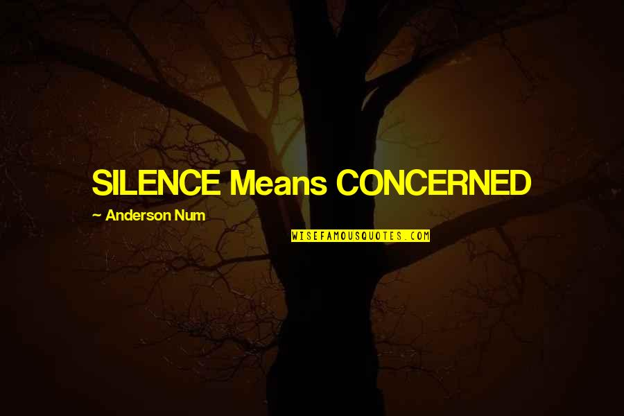 Glee Regionals Quotes By Anderson Num: SILENCE Means CONCERNED