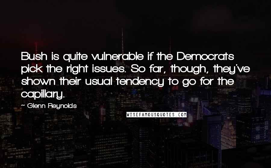 Glenn Reynolds quotes: Bush is quite vulnerable if the Democrats pick the right issues. So far, though, they've shown their usual tendency to go for the capillary.