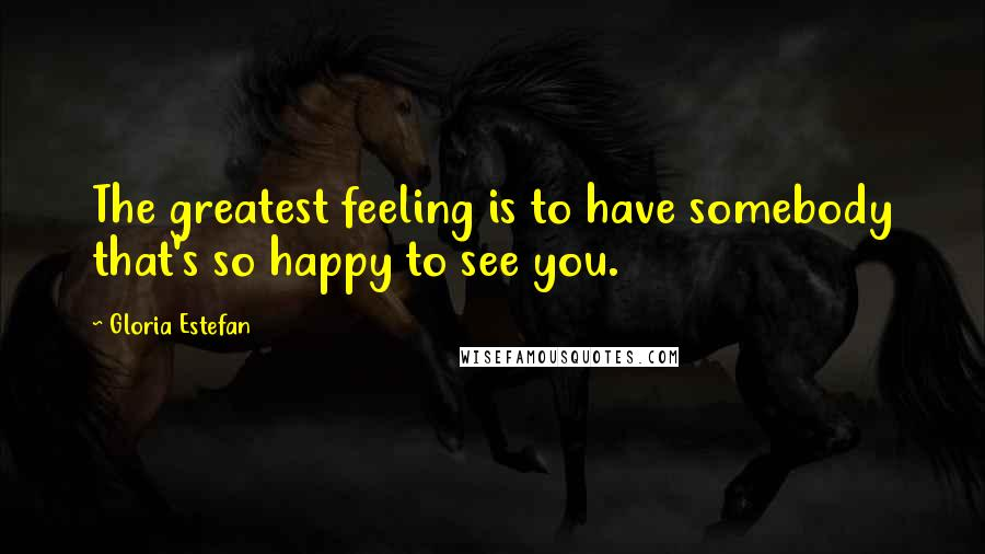 Gloria Estefan quotes: The greatest feeling is to have somebody that's so happy to see you.